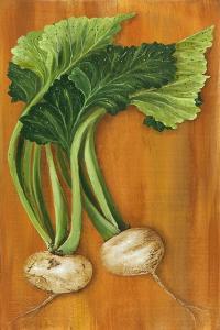 Turnip by Gigi Begin