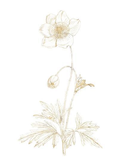 Gilded Botanical II-Wild Apple Portfolio-Art Print