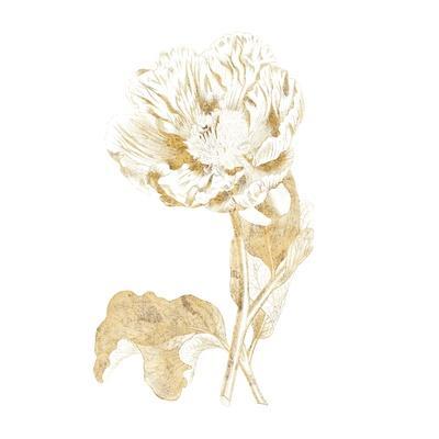 https://imgc.artprintimages.com/img/print/gilded-botanical-vii-sq_u-l-q1b45lf0.jpg?p=0