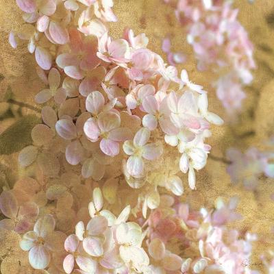 Gilded Hydrangea I-Sue Schlabach-Art Print