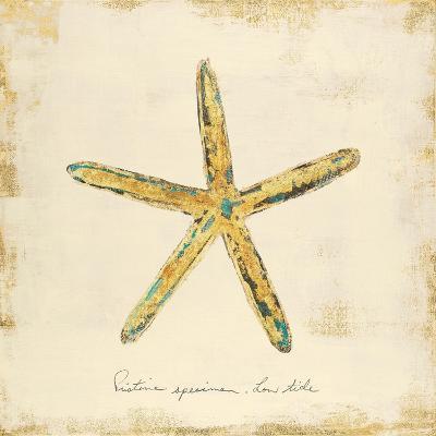 Gilded Ocean Starfish-Studio 5-Art Print
