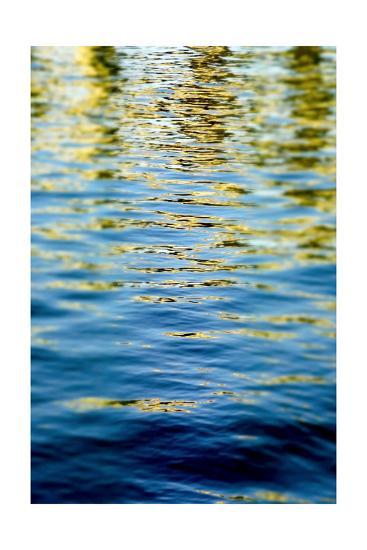 Gilded Seas-Barbara DeBord-Premium Photographic Print