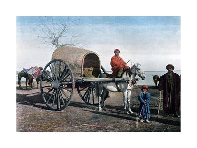 Bukhara Wagon, Uzbekistan, C1890