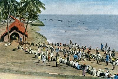 Communal Village Meal, Andaman and Nicobar Islands, Indian Ocean, C1890 by Gillot