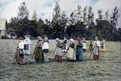 Haymaking around Moscow, Russia, C1890