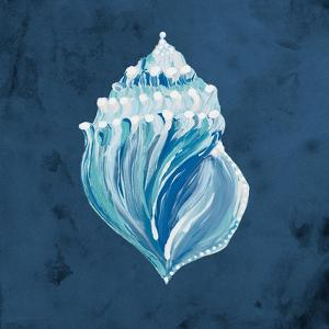Azul Dotted Seashell on Navy II by Gina Ritter
