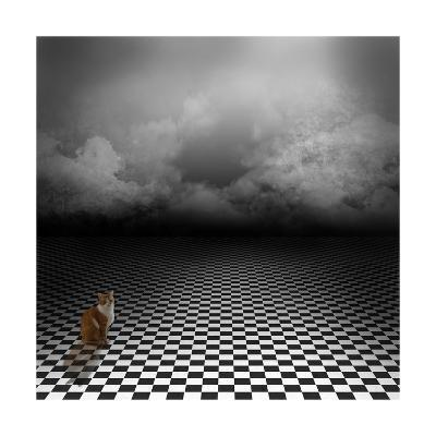 Ginger Cat Sitting In Empty, Dark, Psychedelic Image With Black And White Checker Floor-IngaLinder-Art Print