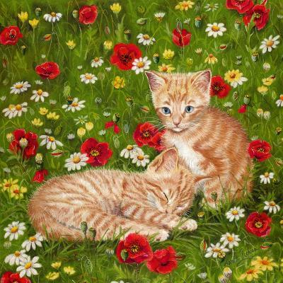 Ginger Kittens in Red Poppies-Janet Pidoux-Giclee Print