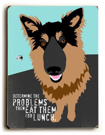 Determine the problems