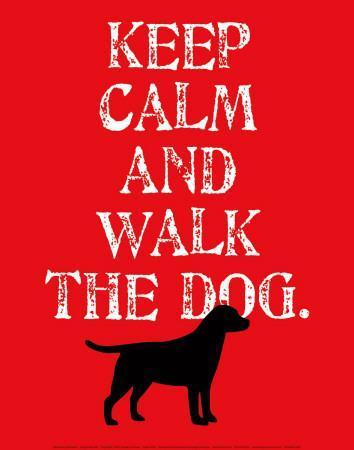 Keep Calm (Labrador)