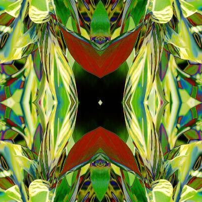 Ginger Shield2-Rose Anne Colavito-Art Print