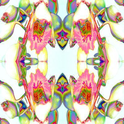 Ginger3-Rose Anne Colavito-Art Print