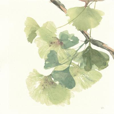 Gingko Leaves II Light-Chris Paschke-Premium Giclee Print