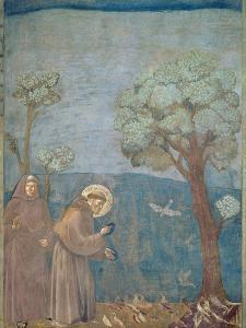 St. Francis Preaching to the Birds, 1297-99 by Giotto di Bondone