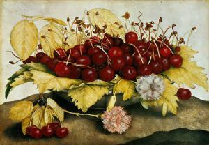 Cherries and Carnations by Giovanna Garzoni
