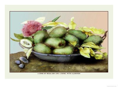 Dish of Medlars, A Rose, and Almonds