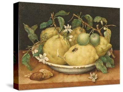 Still Life with a Bowl of Citrons, C.1640