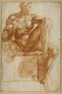 Ignundo on the Sistine Valut by Giovanni Battista Rosso Fiorentino