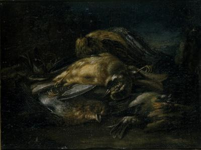 Dead Bird, 1664