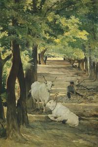 Avenue with Oxen and Stonebreaker by Giovanni Fattori