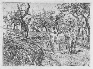 Cattle Amongst Olive Trees by Giovanni Fattori
