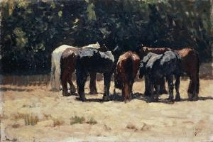 Horses in Sun, Circa 1880 by Giovanni Fattori