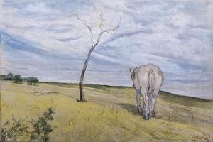 White Horse by Giovanni Fattori
