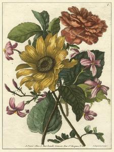 Floral Posy I by Giovanni Ferrari