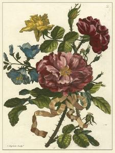 Floral Posy II by Giovanni Ferrari