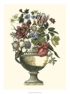 Floral Splendor II by Giovanni Piranesi