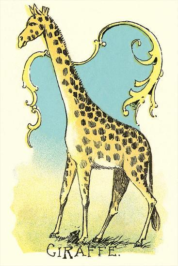 Giraffe Drawing--Art Print