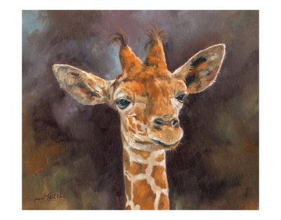 Giraffe Portrait-David Stribbling-Art Print