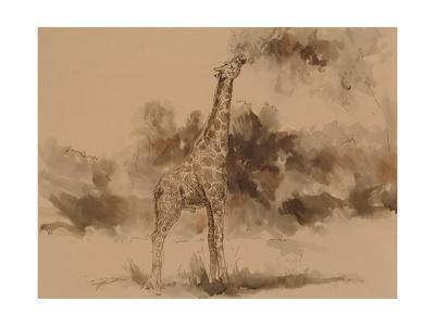 https://imgc.artprintimages.com/img/print/giraffe-s-isoceles_u-l-q1br5oz0.jpg?p=0