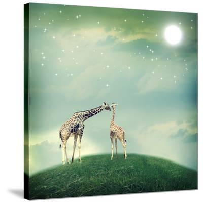 Giraffes In Friendship Or Love Concept Image-Melpomene-Stretched Canvas Print