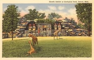 Giraffes in Zoo, Detroit, Michigan