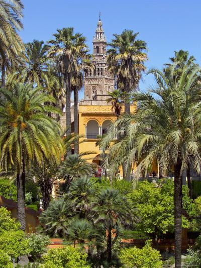 Giralda Tower Seen from Alcazar Gardens, Seville, Spain-Alan Copson-Photographic Print