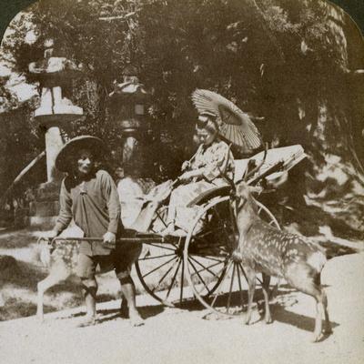 https://imgc.artprintimages.com/img/print/girl-feeding-sacred-deer-on-her-way-to-prayers-grounds-of-kasuga-temple-nara-japan-1904_u-l-q10lv400.jpg?p=0
