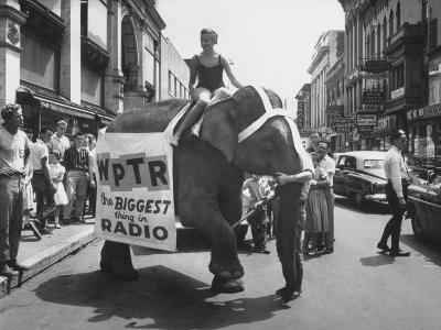 Girl Riding Elephant as a Publicity Stunt for a Radio Station-Peter Stackpole-Photographic Print