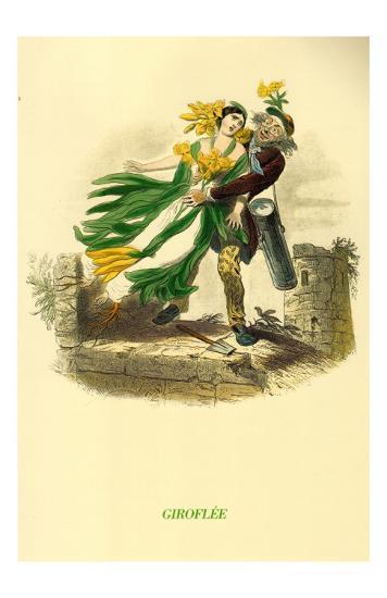 Giroflee--Art Print