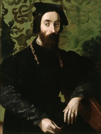 Portrait of a Musician, C.1540