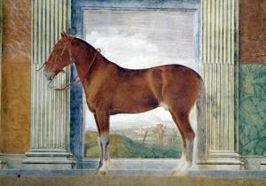 Sala Dei Cavalli, Chestnut Horse from the Stables of Ludovico Gonzaga III of Mantua, 1528 by Giulio Romano