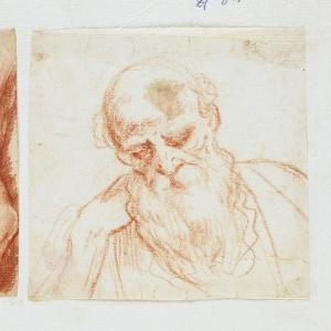 Head of a Bearded Man Looking Down by Giuseppe Cesari