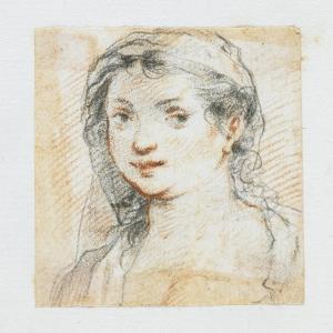 Head of a Woman by Giuseppe Cesari