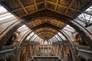 Natural History Museum I by Giuseppe Torre
