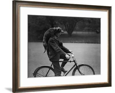Give a Dog a Ride--Framed Photographic Print