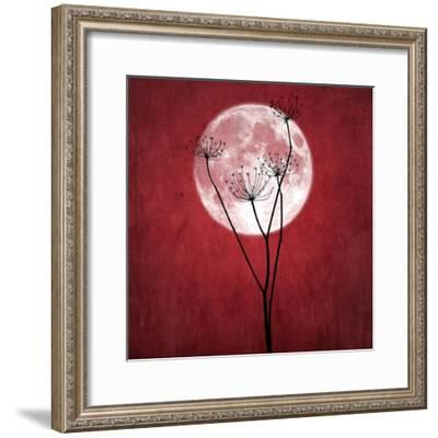 Give Me the Moon-Philippe Sainte-Laudy-Framed Photographic Print