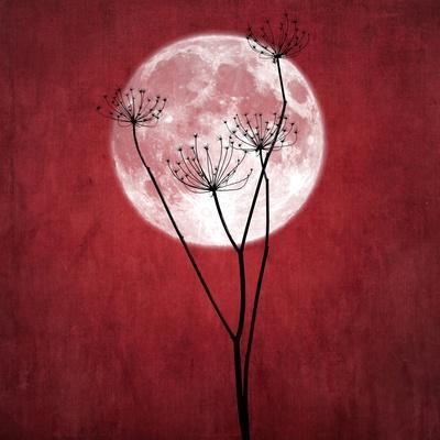 https://imgc.artprintimages.com/img/print/give-me-the-moon_u-l-q1g8ry20.jpg?p=0