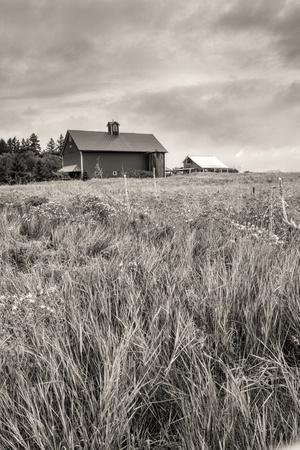 B&W of Farm Field and Barn.