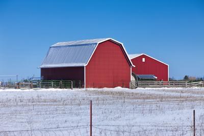 Red Barn on Snowy Prairie.