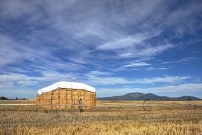 Rural Landscape of Haystack.